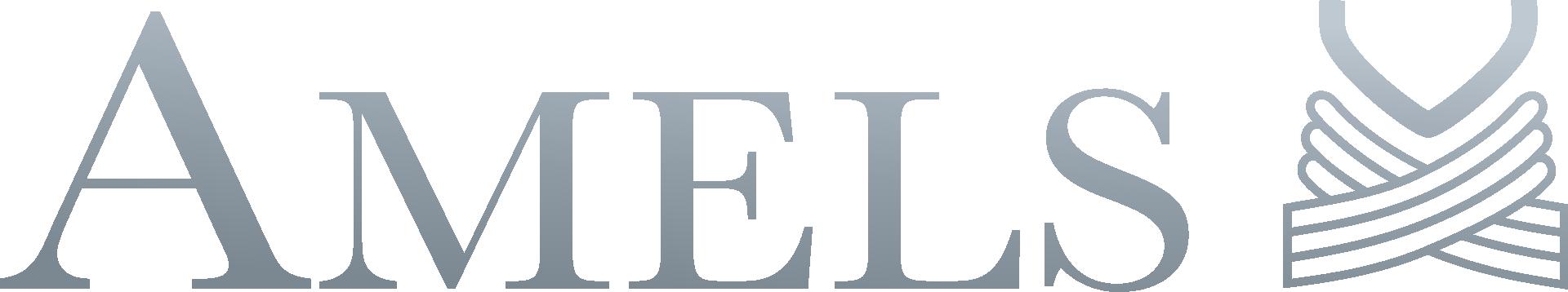 amels-logo