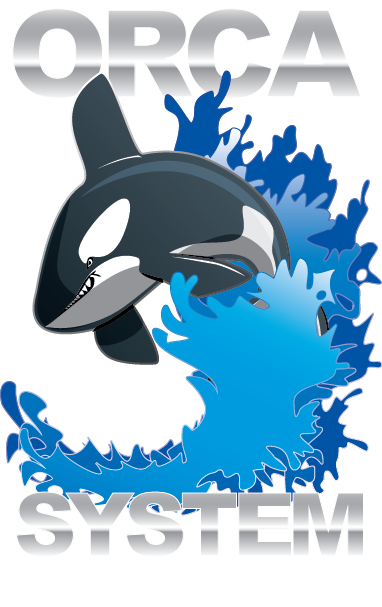 orca-no-background